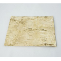 Kora brzozy płat 20x15cm - tło