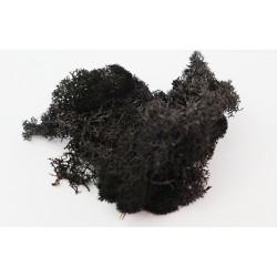 Chrobotek reniferowy czarny...