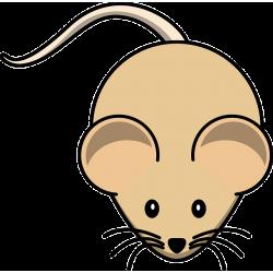Mysz osesek mrożony 1/2g